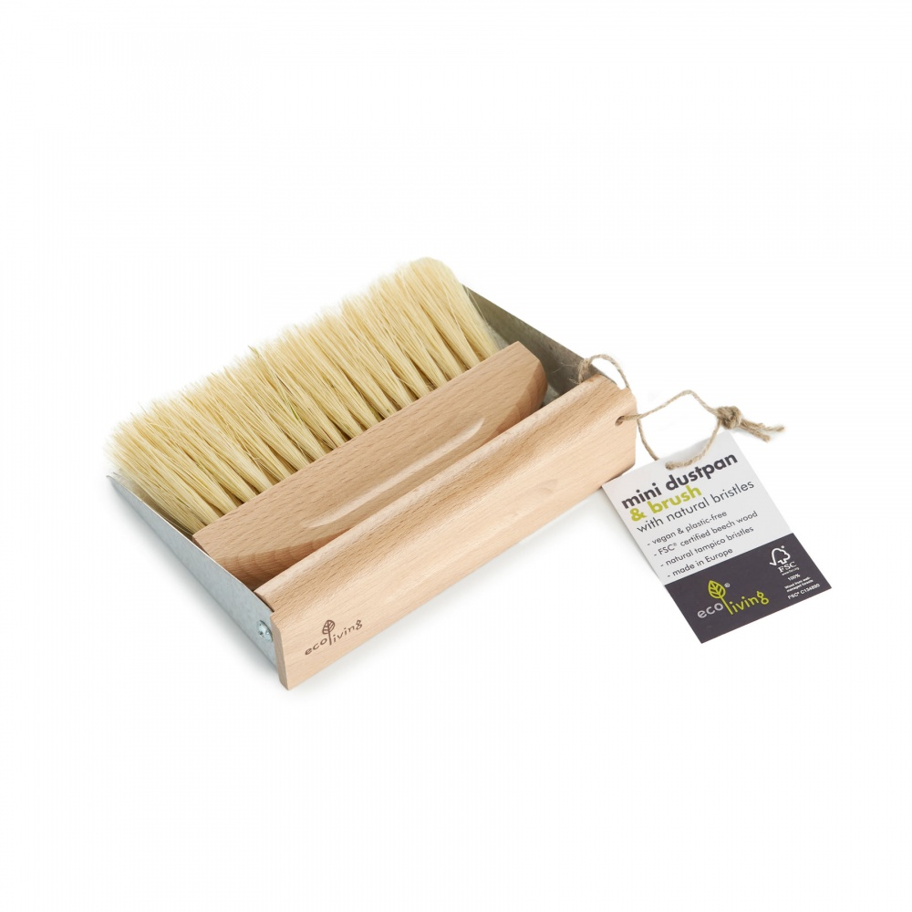 Mini Dustpan and Brush Set