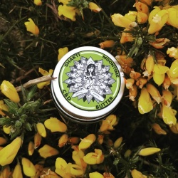 Shakti Moontime CBD Butter