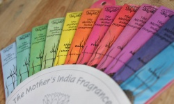 Fair Trade Indian Incense - Strong Scents